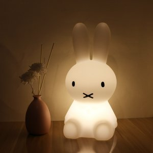 LED Rabbit Night Night Image 8